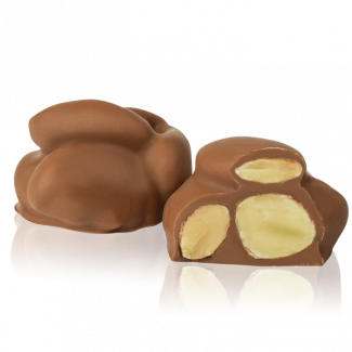 Nut Kleynods, milk chocolate coated almond